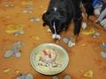 3 urodziny naszej Nikusi